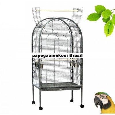 Papegaaienkooi Brasil