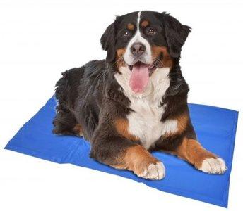 Koelmat voor Honden (60x50 cm)