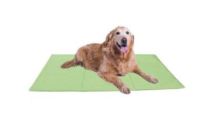 Koelmat voor Honden (100x60 cm)
